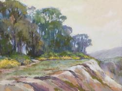 Kris Buck - A Walk Along the Bluffs