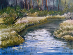 Claudia Artzmann - Quiet Stream in Sweden