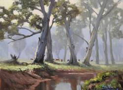 John Rice - Misty Morning On The Dunnville Loop