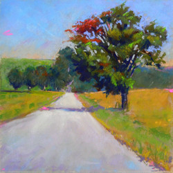 Clarence A. Porter - The Particular Country Walk #1