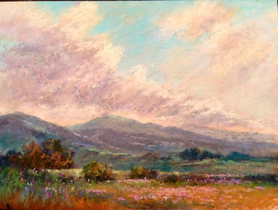Janis Ellison - Fair Skies