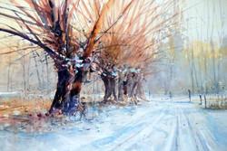 Michał Jasiewicz - Winter Willows