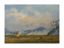 Andy Evansen - Burning the Fields, China