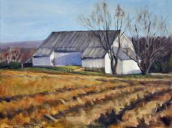 Erin Gill - White Barn