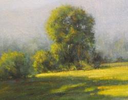 Mark Saenger - Early Light Vermont