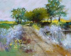 Barbara Benedetti Newton - Mustard Field.jpg