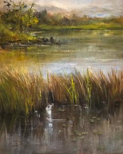 Sandy Byers - Cranberry Lake