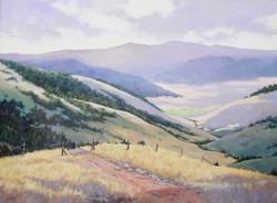 Steve Whitney -  Flathead Country