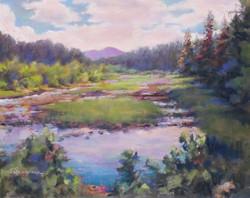 Donna H. Branson - Eastern Oklahoma Spring