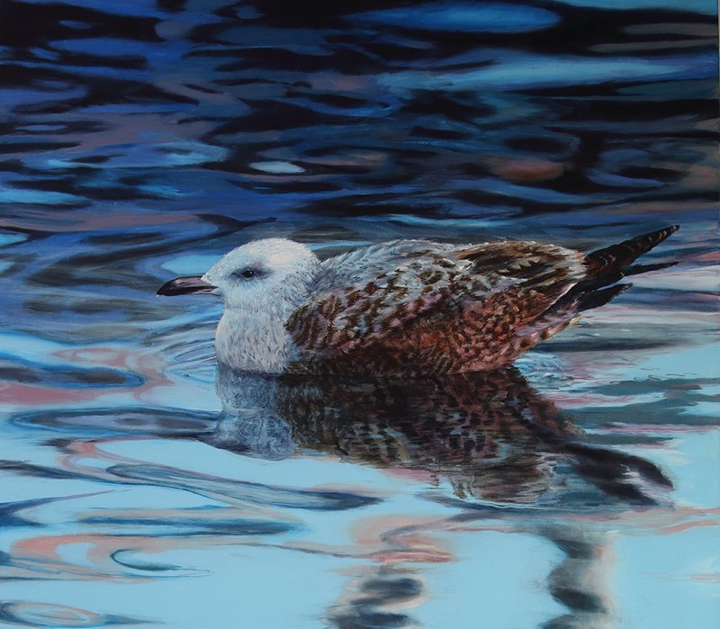 Elizabeth Tyler - Evening Gull (acrylic)