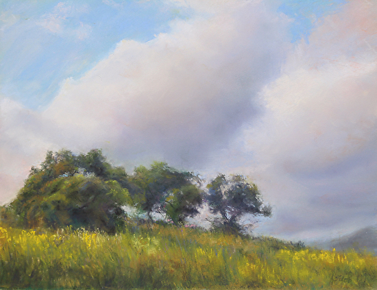 Terri Taber - Watching the Storm Pass By