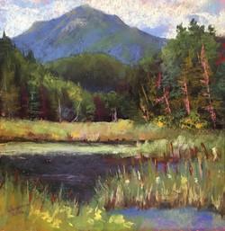 Susan Whiteman - Whiteface from Little Cherry Creek Bog (plein air)