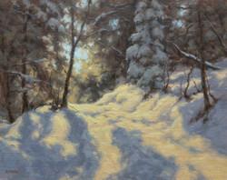 Janet Anderson - Pathway Illumination