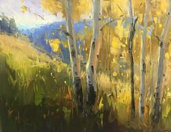 Stacey Peterson - Aspen Hillside