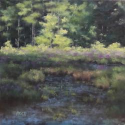 Sharon Price - Summer Meditation