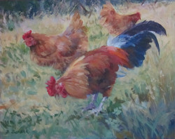 Dee Burdick - Backyard Chickens