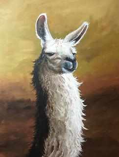 The No-Drama Llama