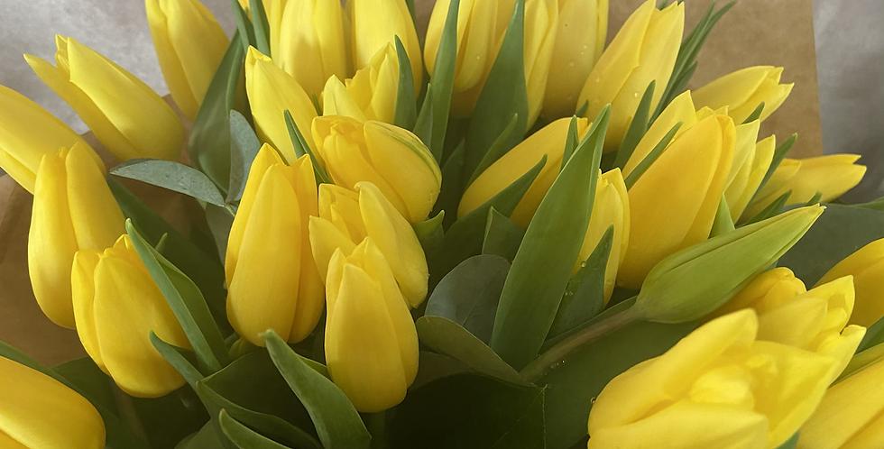 Handtie of Tulips