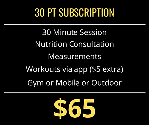 30 minute PT session