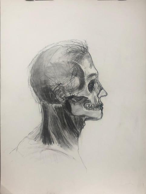 Overlaid Head Anatomy