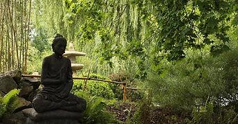 Retraite meditative.jpg