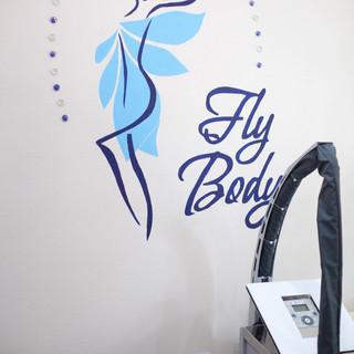 FlyBody