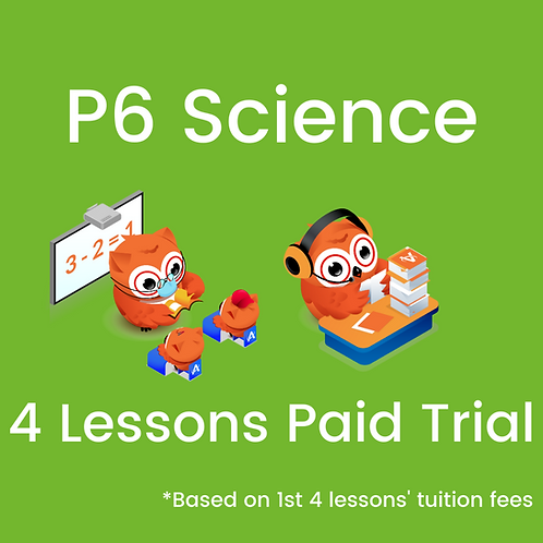 P6 Science - 4 Lessons Paid Trial
