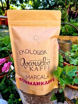 ekologiskt-kaffe-marcala.jpg