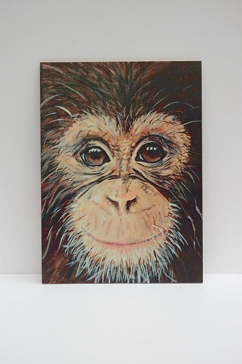 Vintage portre - Maymun