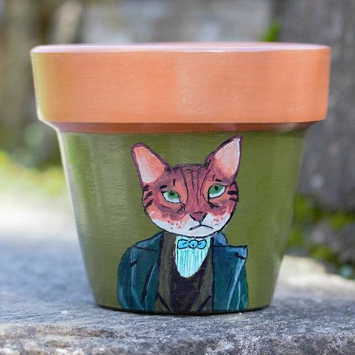 Boyalı Saksı - Ciddi Kedi