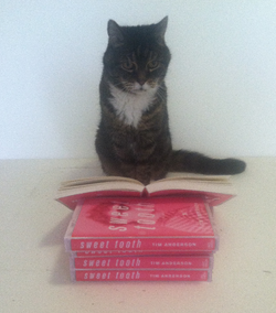 Stella reading