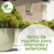 Venta de macetas de interior y exterior para oficinas corporativas y hogar