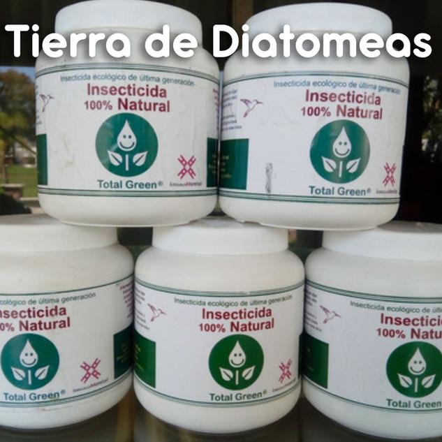 Diatomeas_01.jpg