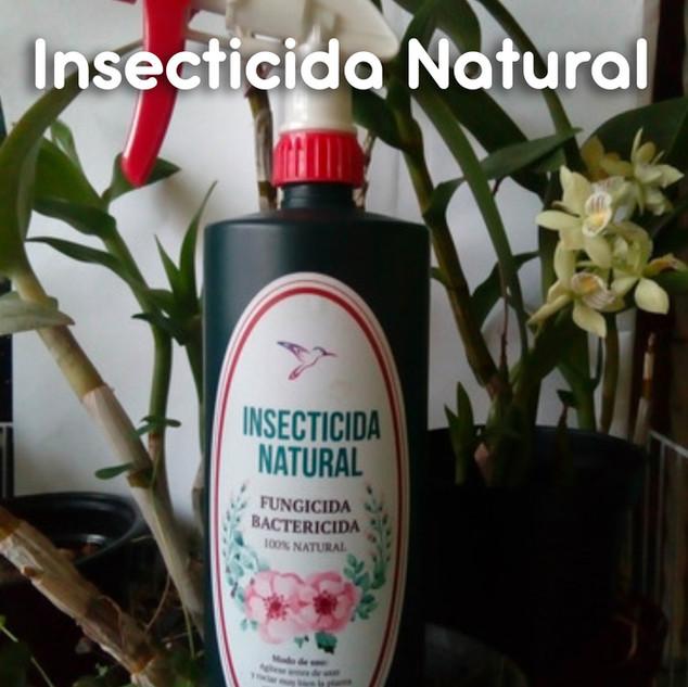 Insecticida_01.jpg