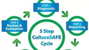 CultureSAFE Programme