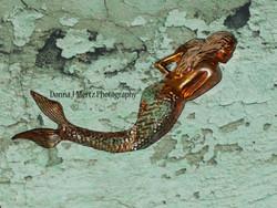 mermaid 1.jpg