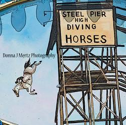 diving ponies bag.jpg