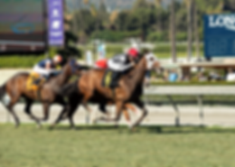 Chosen Vessel wins at Santa Anita