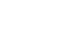 logo-ua-aniversario.png