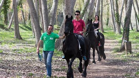 13-cavalls.jpg