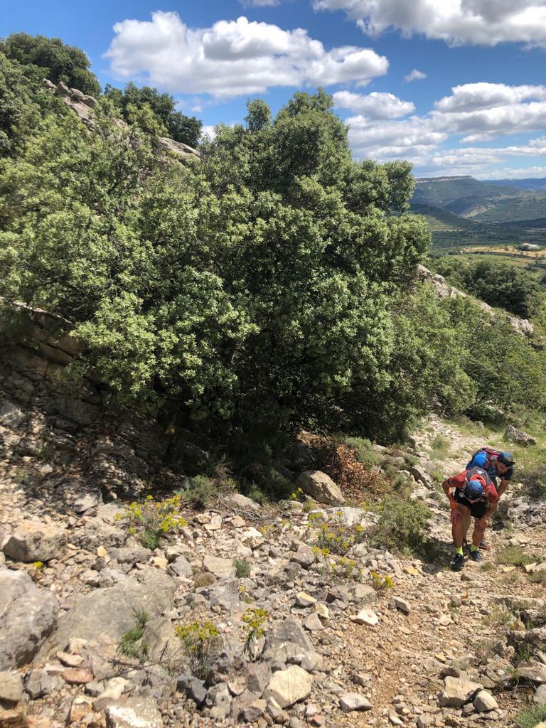 """GR331 TREKKING """"Camí de Conquesta"""" 7días"""