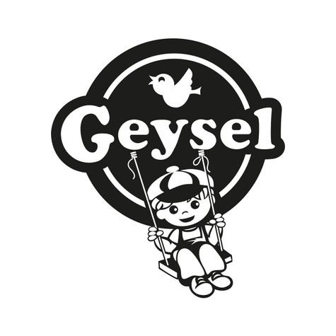 GEYSEL