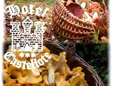 Jornadas gastronómicas otoño 2020