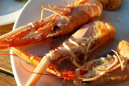 lobster-240558_1920.jpg