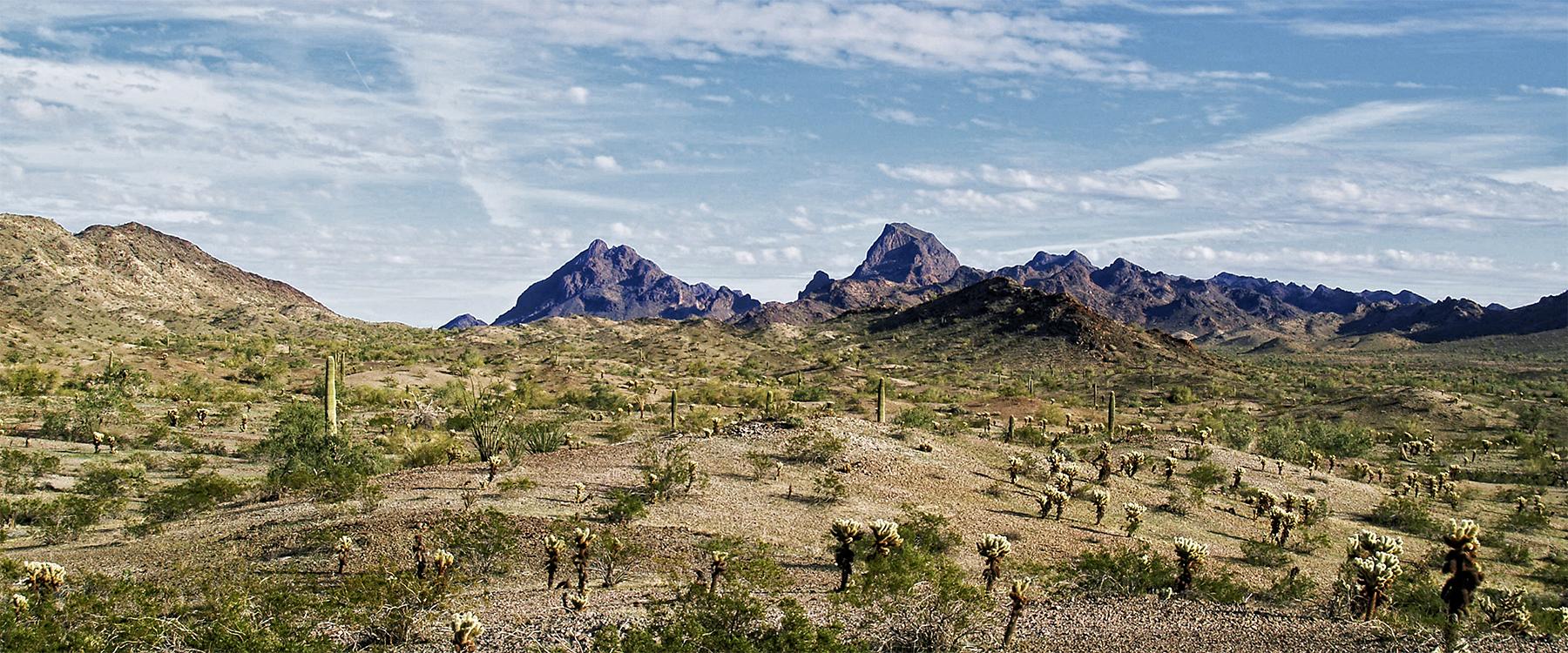 LA PAZ COUNTY AZ. landscape