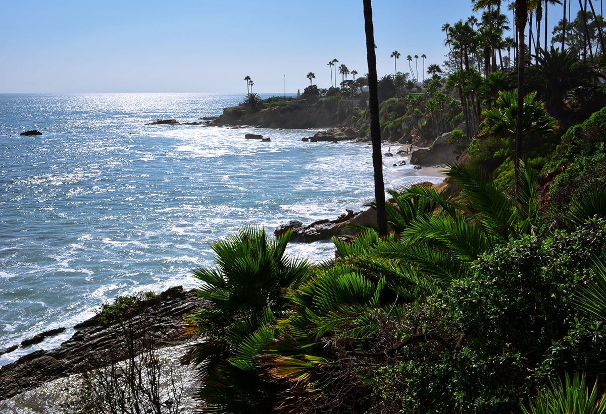 LAGUNA BEACH CLIFF DRIVE