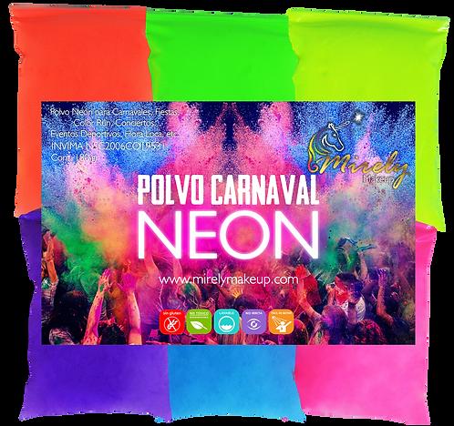 Paquete Polvo Carnaval x6
