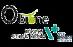 logo-vetexpert3-451x290.png