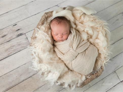 Baby Patrick | Sarasota Newborn Photographer