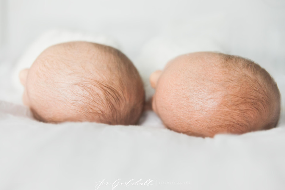 Twins   Sarasota Newborn Photographer